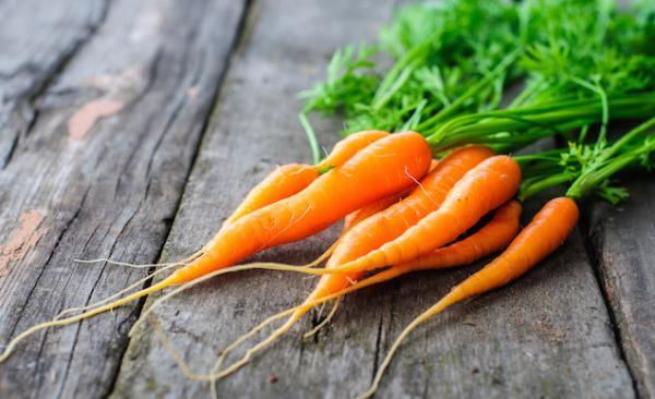 leacuri-babesti-morcovul