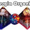 Energia Orgonică Universală și Orgonul