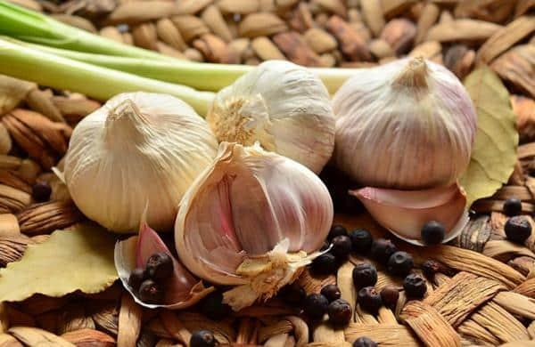 beneficiile-usturoiului