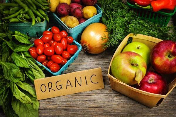 mancare-organica