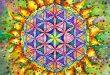 Geometria Sacră Floarea Vieții – Documentar Tradus