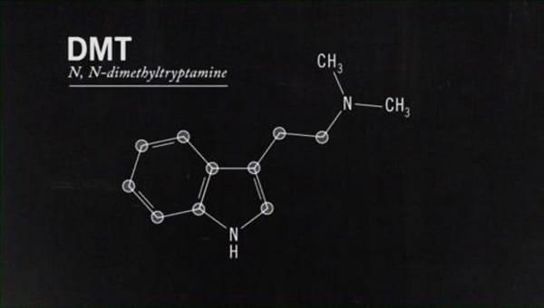 dmt-dimetiltriptamina