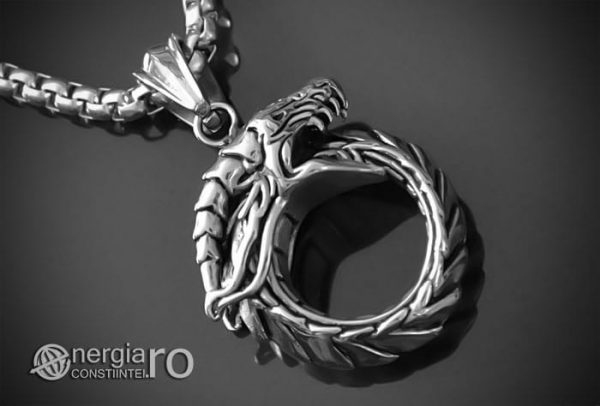 Pandant-Amuleta-Pandantiv-Dragon-Oroboro-Ouroboro-Ouroboros-Protectie-Protector-INOX-PND115-00