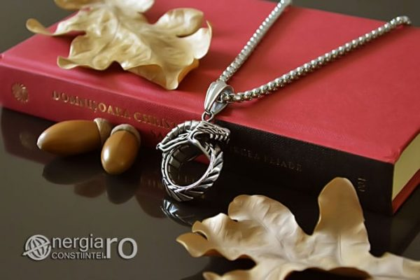 Pandant-Amuleta-Pandantiv-Dragon-Oroboro-Ouroboro-Ouroboros-Protectie-Protector-INOX-PND115-02