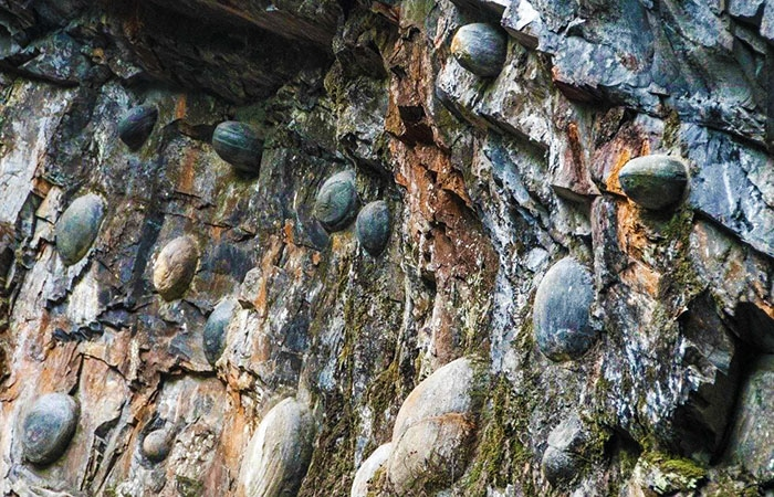 pietrele-rotunde-care-ies-din-munti-muntele-din-gulu-zhai
