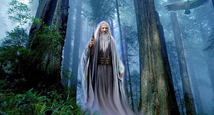 druizii-oamenii-stejarului-natura
