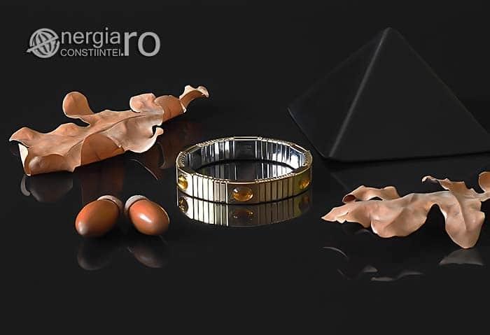Bratara-Magnetica-Energetica-Medicinala-Terapeutica-Chihlimbar-Magneti-Neodim-INOX-BRA001-01