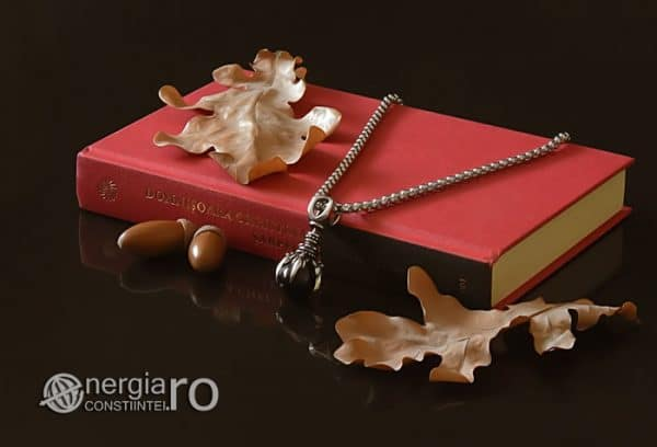 amuleta-talisman-medalion-colier-pandant-pandantiv-protector-protectie-protectoare-gheara-de-dragon-onix-inox-PND240-02
