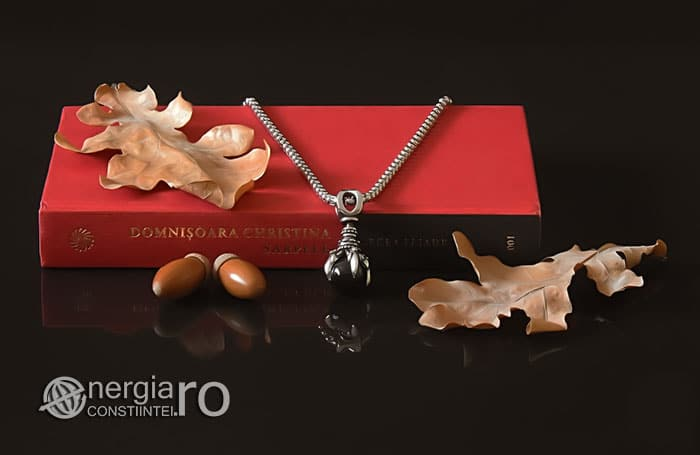amuleta-talisman-medalion-colier-pandant-pandantiv-protector-protectie-protectoare-gheara-de-dragon-onix-inox-PND240-04