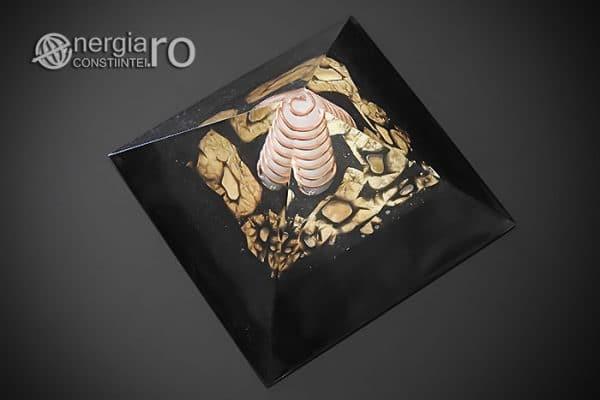 Piramida-Energetica-Orgonica-Magnetica-Orgon-Magnetic-Cristal-Cuart-Laptos-Cenusa-Vulcanica-Turmalina-ORG051-02