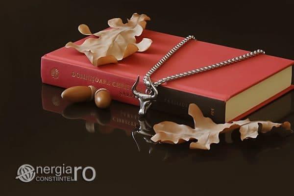 Amuleta-Talisman-Medalion-Colier-Pandant-Pandantiv-Protectir-Protector-Protectoare-Bour-Taur-Bou-Bizon-INOX-PND250-02
