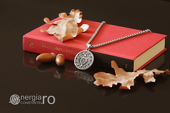 Amuleta-Talisman-Medalion-Colier-Pandant-Pandantiv-Dragon-Triquetra-INOX-PND256-03