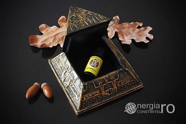piramida-orgonica-orgon-energetica-egipteana-protectoare-protectie-ORG070-04