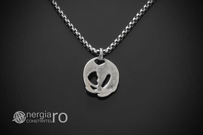 amuleta-talisman-medalion-colier-pandant-pandantiv-corb-cioara-inox-longevitate-PND295-02