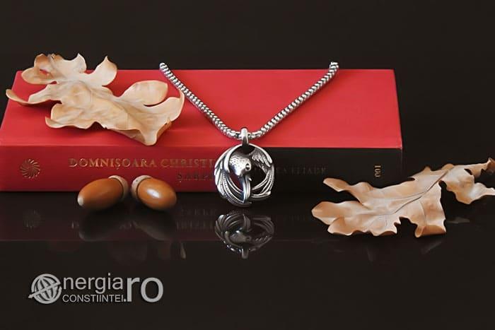 amuleta-talisman-medalion-colier-pandant-pandantiv-corb-cioara-inox-longevitate-PND295-05