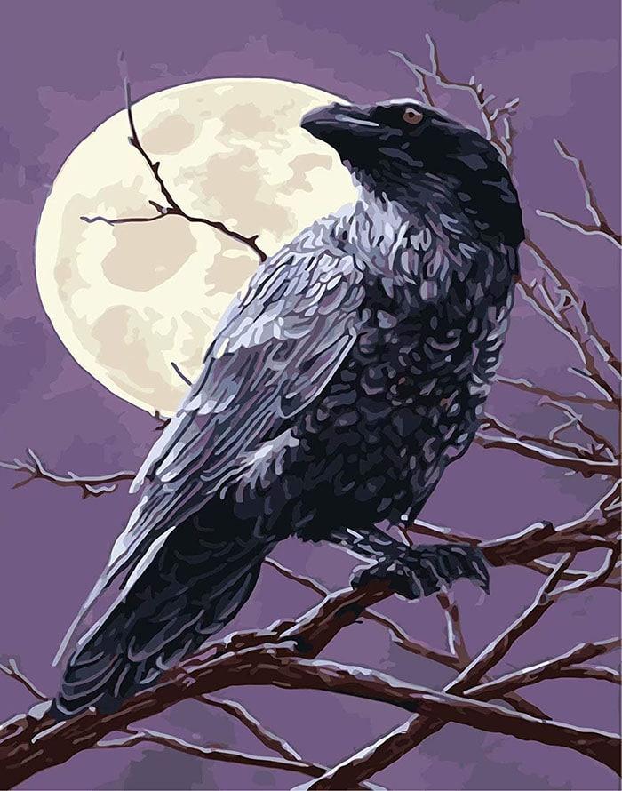 ce-simbolizeaza-sau-semnifica-corbul-cioara-00
