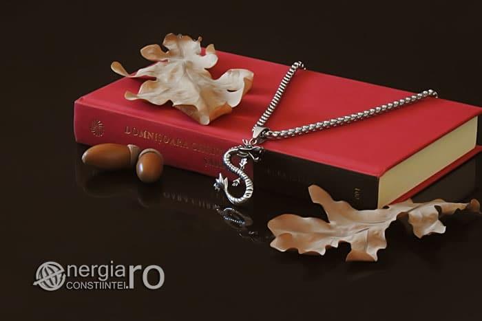 amuleta-talisman-medalion-colier-pandant-pandantiv-dragon-protector-protectir-protectoare-inox-PND266-03