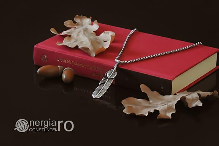 amuleta-talisman-medalion-colier-pandant-pandantiv-pana-de-pasare-inox-PND320-03