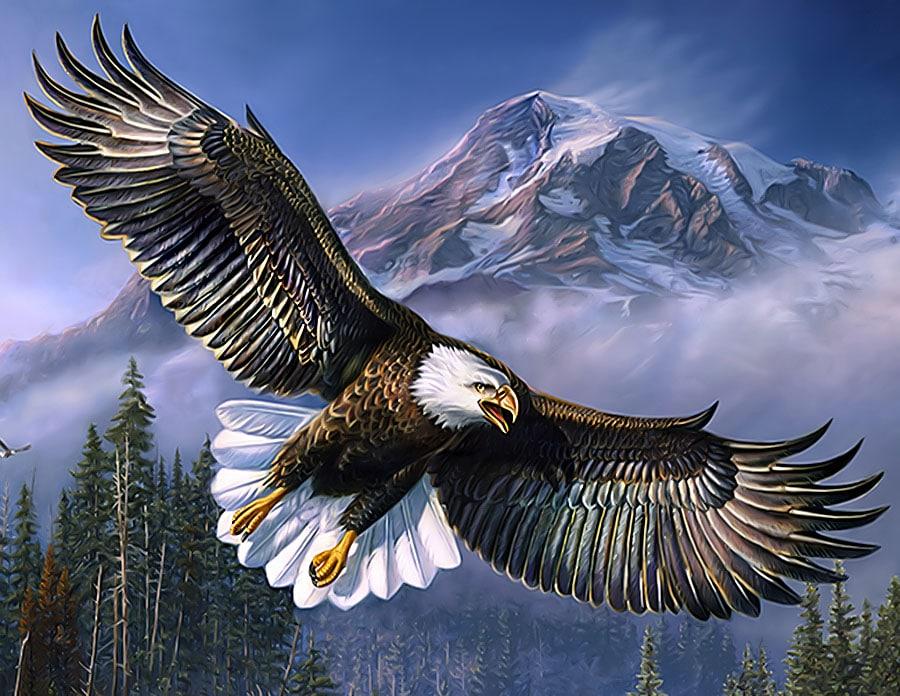 ce-semnifica-reprezinta-simbolizeaza-vulturul