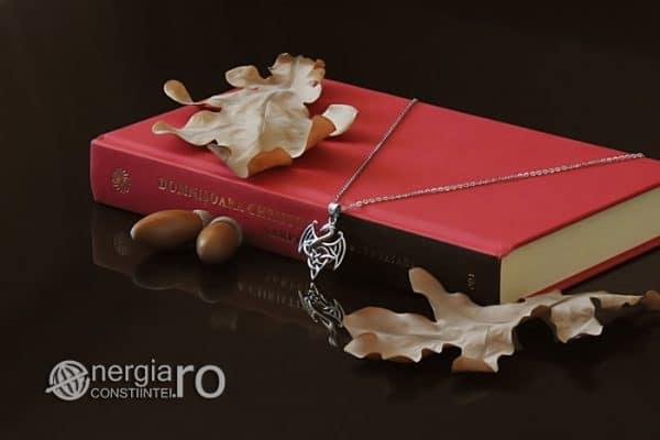 amuleta-talisman-medalion-colier-pandant-pandantiv-dragon-inaripat-argint-925-protecetor-protectie-protectoare-PND640-02