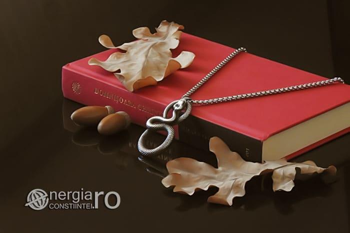 amuleta-talisman-medalion-colier-pandant-pandantiv-sarpe-infinit-protectie-protector-protectoare-inox-PND330-03