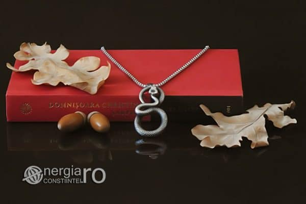 amuleta-talisman-medalion-colier-pandant-pandantiv-sarpe-infinit-protectie-protector-protectoare-inox-PND330-05
